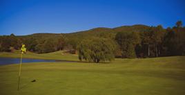 Orchard Golf Club