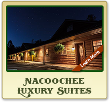 nacochee valley suites
